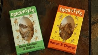 Baixar - The Cricket Eating Challenge Brooklyn And Bailey Grátis