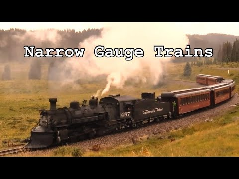 Narrow Gauge Trains