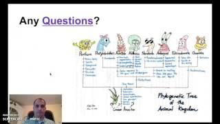 ap biology exam review evolution part 3