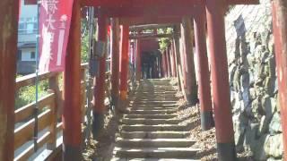 高野山 清高稲荷大明神 2011/04/01