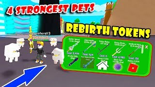 New Rebirth Tokens Update & FAN Gave Me 4 STRONGEST Pets (R$ 9999) In RPG World Simulator! [Roblox]