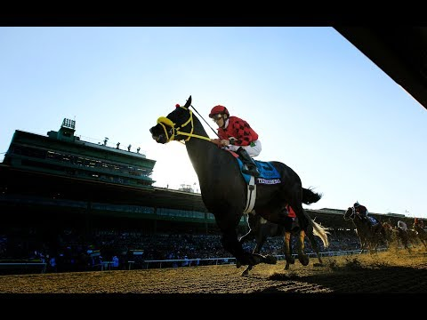 Spike In Horse Fatalities At Santa Anita Park Casts Shadow Over Racing Industry