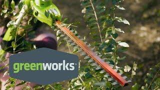 Greenworks 24-Volt, 20-Inch Pole Hedger