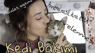Kedi Bakımı (Annemi Nasıl İkna Ettik, Balkondan Düşmesi..)