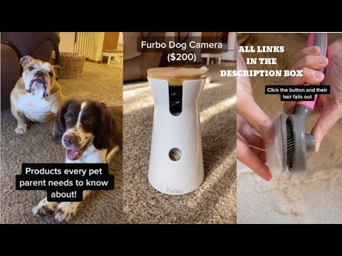 AMAZON MUST HAVES FOR PETS 2020 | PRODUCTS EVERY PET OWNERS NEEDS