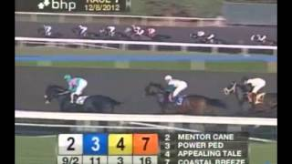Flashback - 2012 Hollywood Park Maiden Race