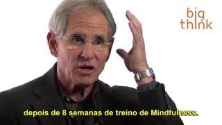 "Jon Kabat-Zinn - Mindfulness e a ""História do Eu"" [Legendado]"