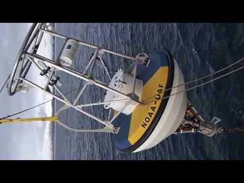Deploying an Ocean Acidification Surface Buoy