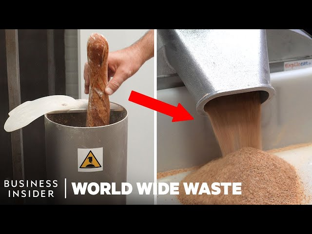 Flour Made From Leftover Bread Could Help Reduce Waste | World Wide Waste