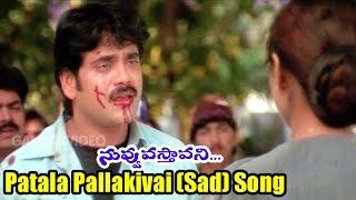 Nuvvu Vasthavani Songs - Patala Pallakivai (Sad) - Akkineni Nagarjuna, Simran Bagga - Ganesh Videos