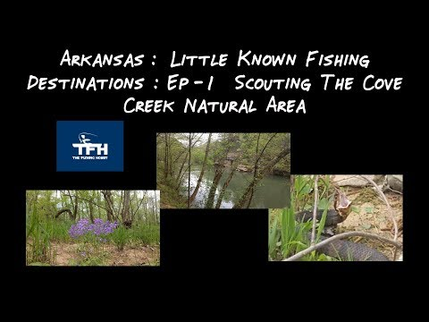 Arkansas: Little Known Fishing Destinations: Ep - 1 Scouting The Cove Creek Natural Area