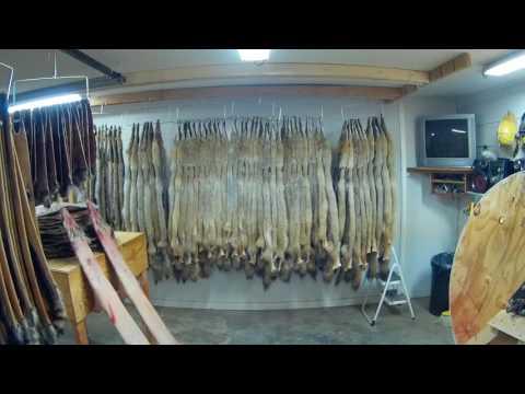 SEK Rush Outdoors 1st fur pickup of