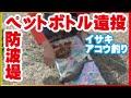 防波堤からペットボトルを投げたらでかいイサキ、アコウ(4話目)