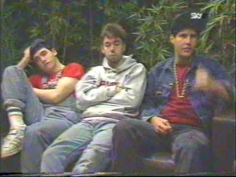 Beastie Boys 1987 Interview (81 of 100+ Interview Series)