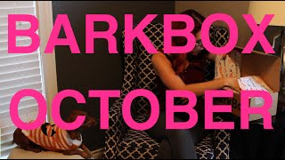 BarkBox Unboxing October - Penny's Sweater Debut and the Desecration of my Favorite Chair! Thumbnail