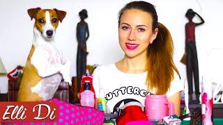 ПОКУПКИ ИЗ ЗООМАГАЗИНА | УХОД ЗА СОБАКОЙ | Elli Di Собаки
