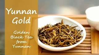 Yunnan Gold (Dian Hong Black Tea) Steeped In Teapot On Cardboard Table