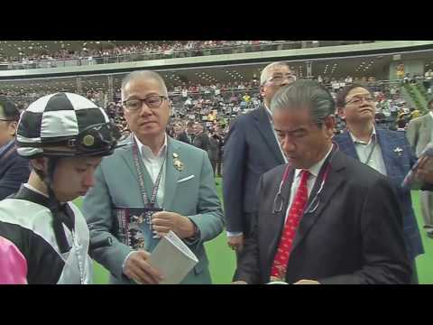 Horse Racing In Hong Kong: 2016 Champions Mile On Trans World Sport