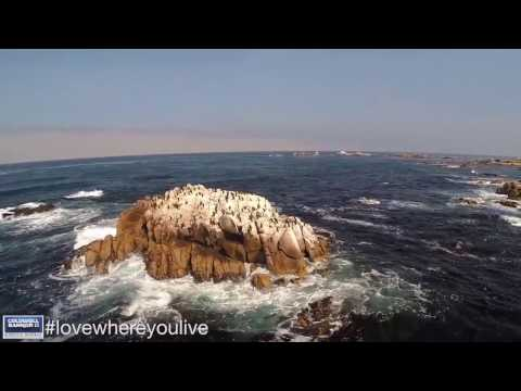 Living in Monterey Peninsula, CA Community Video | Presented by Coldwell Banker
