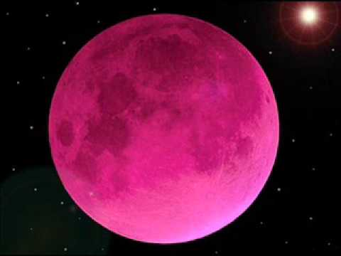Bulan Merah Jambu ......................................................