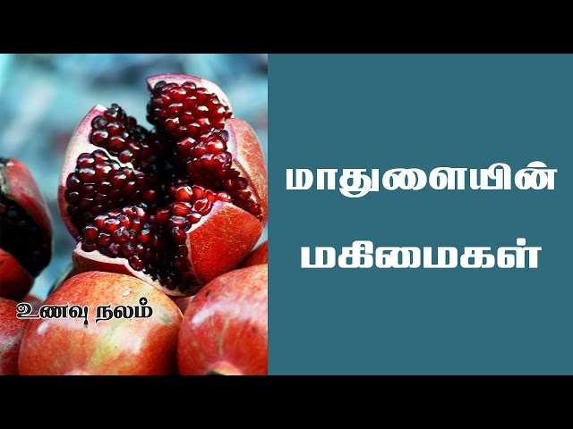?????? ???? ???????   Pomegranate Health Benefits in Tamil   Edai Kuraiya in Tamil