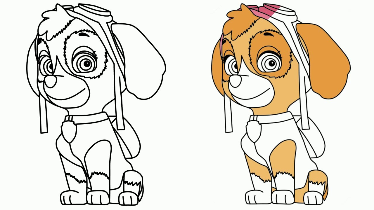 Paw Patrol Coloring Pages Drawing Skye From Paw Patrol