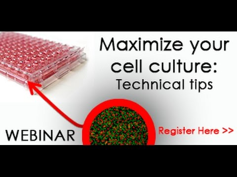 Maximize your cell culture  Technical tips for primary cells