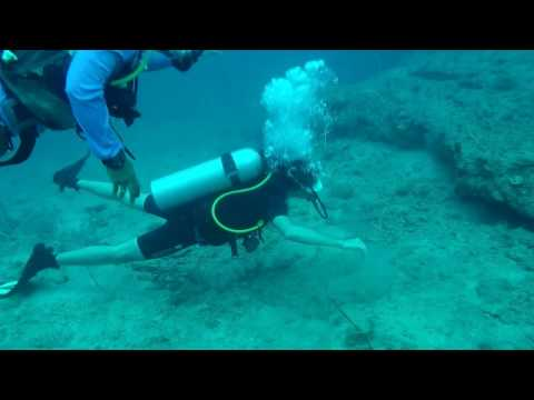 SCUBA Diving In The Andamans - Havelock Island - The Wall