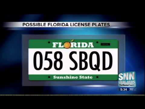 How To Get A Florida Drivers License >> SNN: New Florida License Plate - Cast Your Vote - YouTube