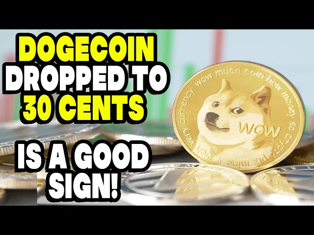 Good News! Dogecoin dipped to 30 cents on DogeDay(Video)