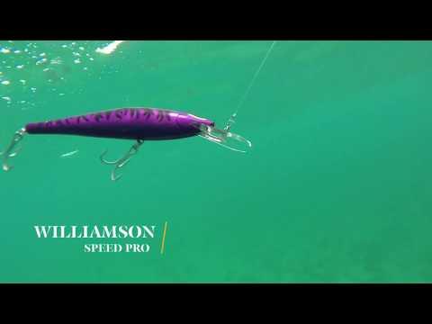How Lures Swim: Williamson Speed Pro