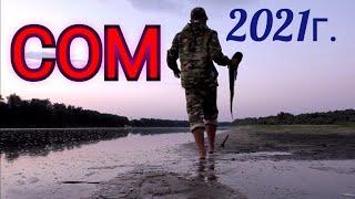 Ловля сома на червя с берега рыбалка на сома 2021 на Дону ловля сома на закидушку