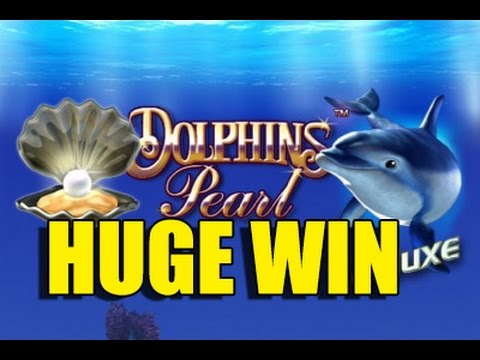 RECORD WIN Dolphins Pearl Deluxe BIG WIN - HUGE WIN betsize 8 euro - Epic reactions