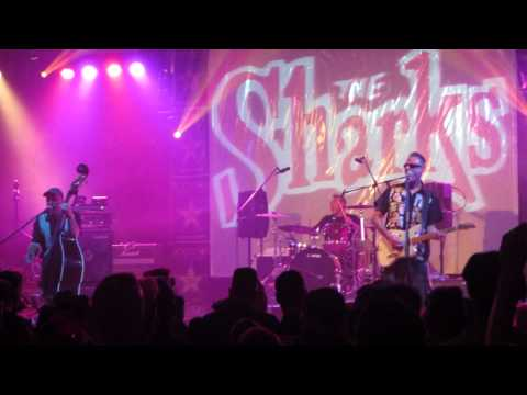 The Sharks - Crazy Maybe @ Psychobilly Meeting 2013