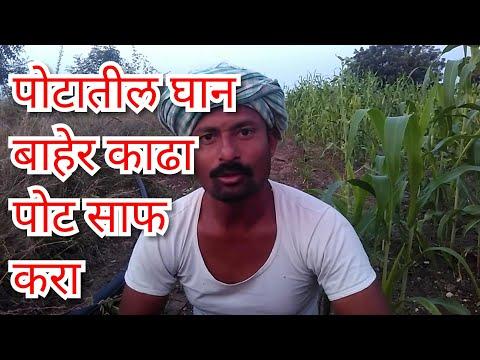 Potatil ghan baher kadha ,Pot saf karanyacha sopa upay,pet saf karneke upay ,kabz,Ayurvedic treatmen
