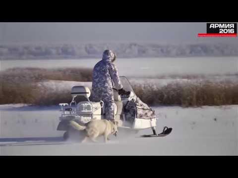 Второй Международный военно-технический форум «АРМИЯ–2016»