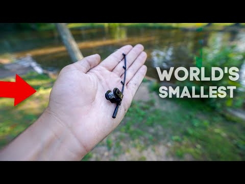 world's-smallest-fishing-rod!!-(catches-fish!)