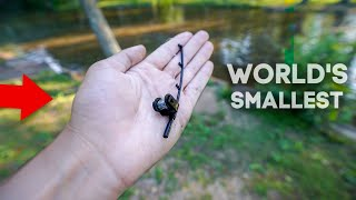 World's SMALLEST Fishing Rod!! (Catches FISH!)