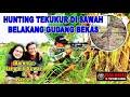 Hunting Tekukur Di Sawah Belakang Gudang Bekas Bulog  Mp3 - Mp4 Download