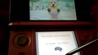 How To Train Your Puppy On Nintendogs+cats