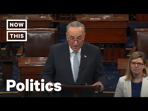 Chuck Schumer Challenges Mitch McConnell on Climate Change   NowThis