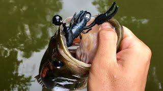 Bass Fishing with MTB's Catch Co. Box (Jigs & Craws)