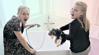 New PUPPY'S First Bath!