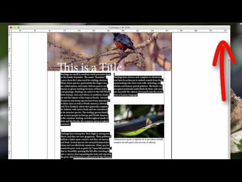 InDesign: Readability & Alignment, Orphans, & Widows