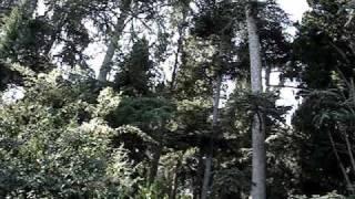 Парк Карасан(Парк Карасан., 2009-10-04T08:50:54.000Z)