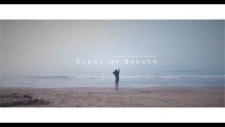Scent of Breath | Bmpcc 6k - Test Footage