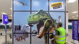 Installation Dinosaurs at the Airport