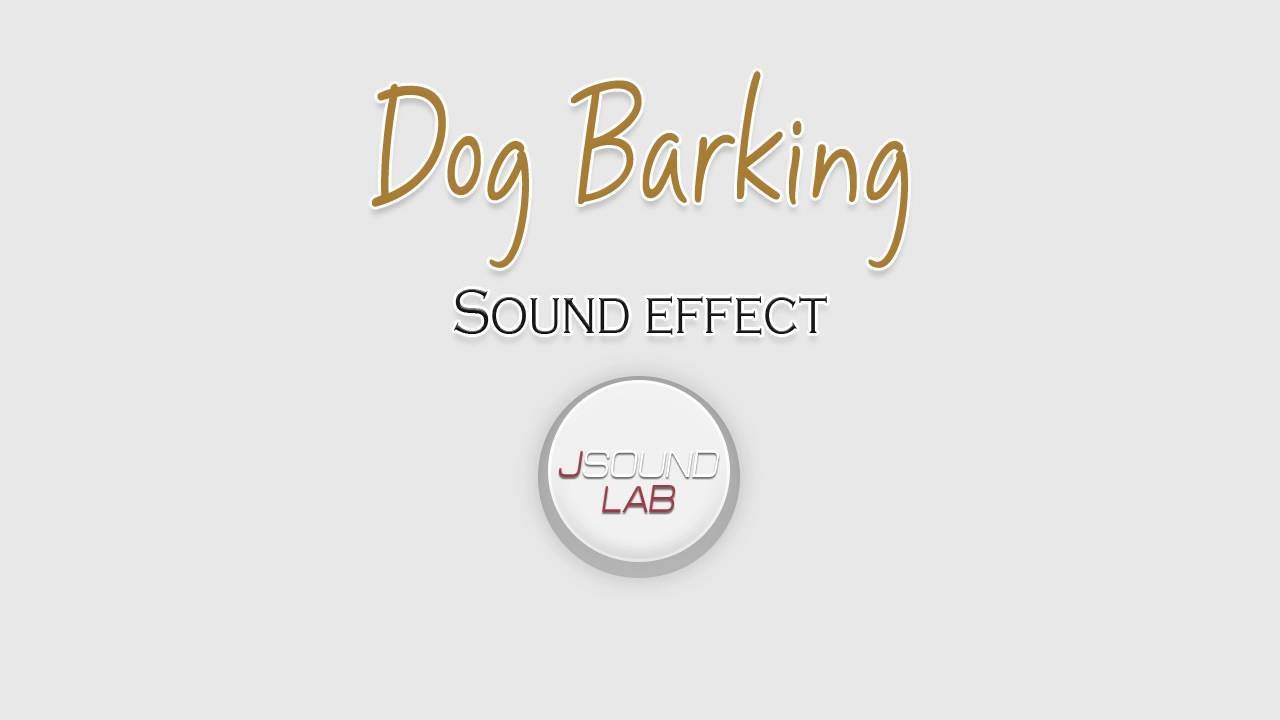 Funny Dog Barking Ringtone Download
