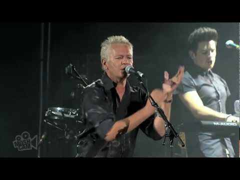 Icehouse - We Can Get Together  (Live in Sydney) | Moshcam