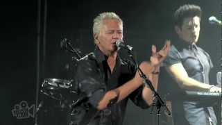 Watch Icehouse We Can Get Together video